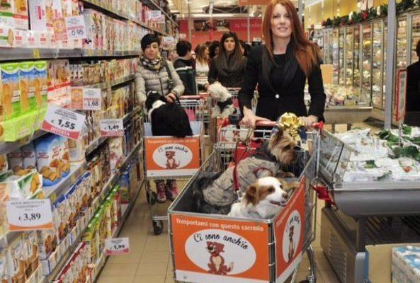 Spesa al supermercato con il cane, nei punti Conad carrelli speciali