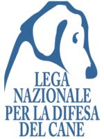 Come aiutare un cane avvelenato: nozioni di primo soccorso