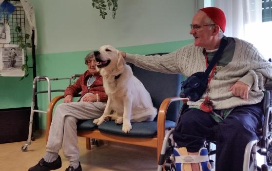 Boccono avvelenati – Ucciso Jazz, il cane della pet therapy in casa di riposo a Menconico (PV)