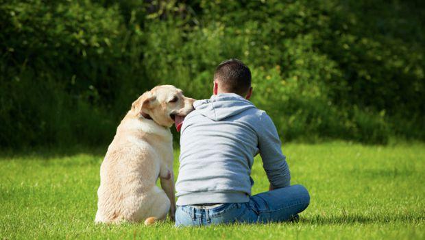 Perché il cane è il migliore amico dell'uomo: ce lo spiega la scienza