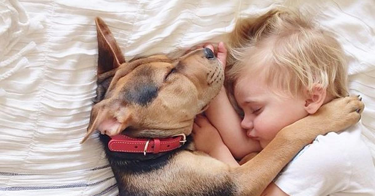Cani e bambini: come farli convivere in sicurezza