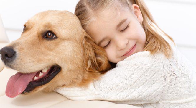 Come ritorna la felicità con la pet therapy