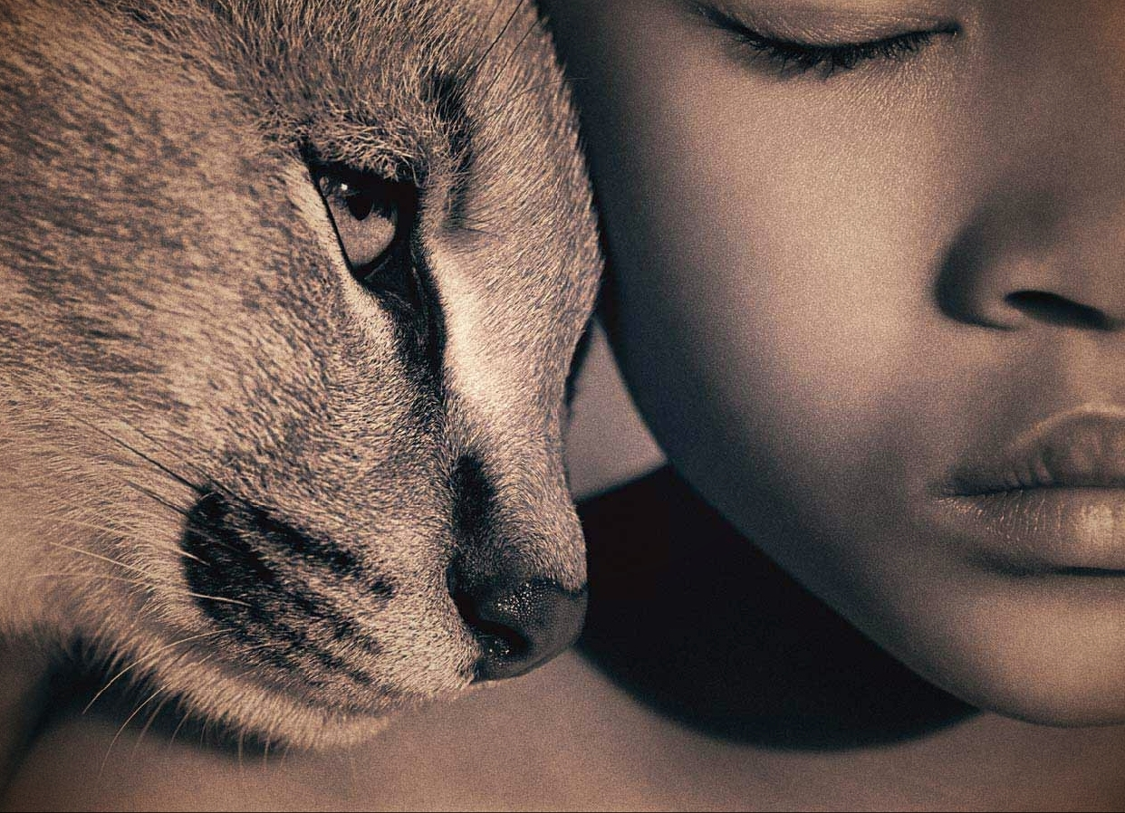 Come gli animali si sono evoluti adattandosi all'uomo