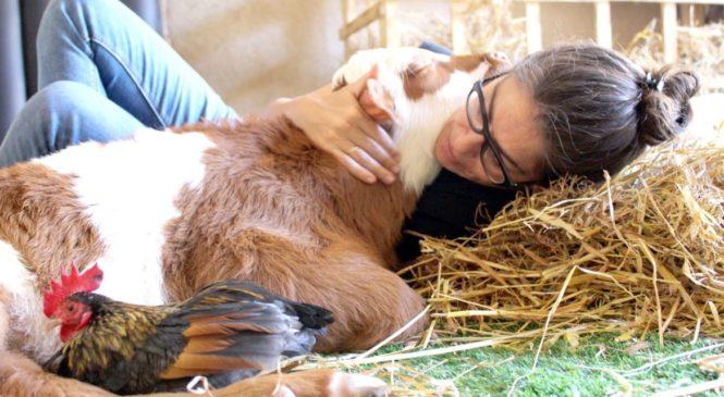 Freedom Farm: la fattoria degli animali disabili