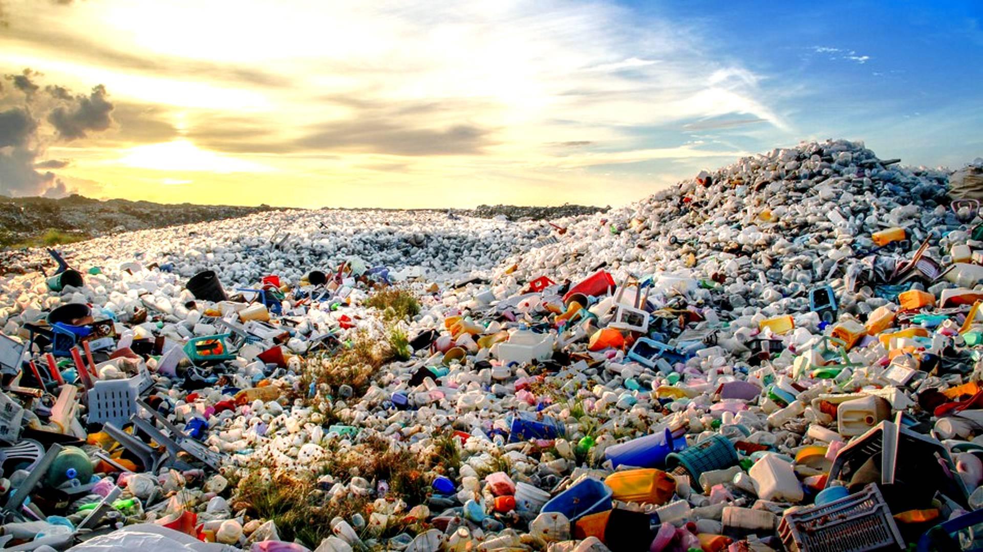 L'evoluzione nell'era della plastica