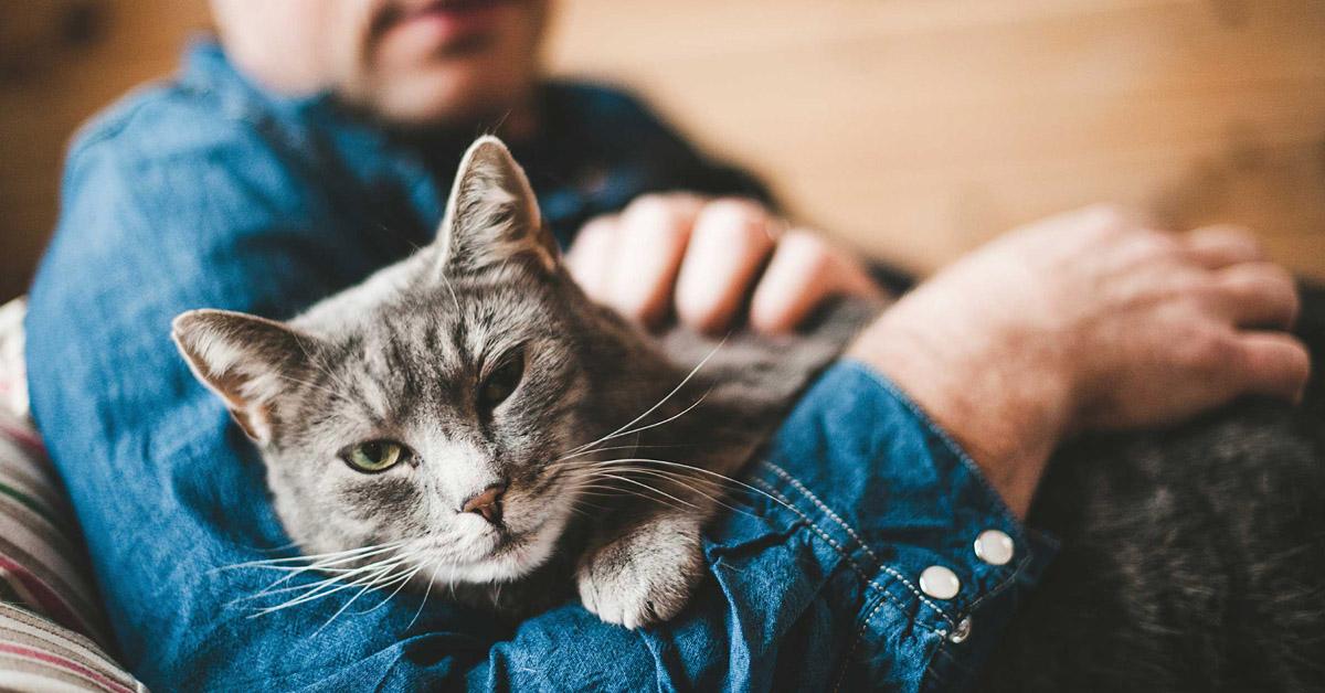 Pet therapy e coronavirus