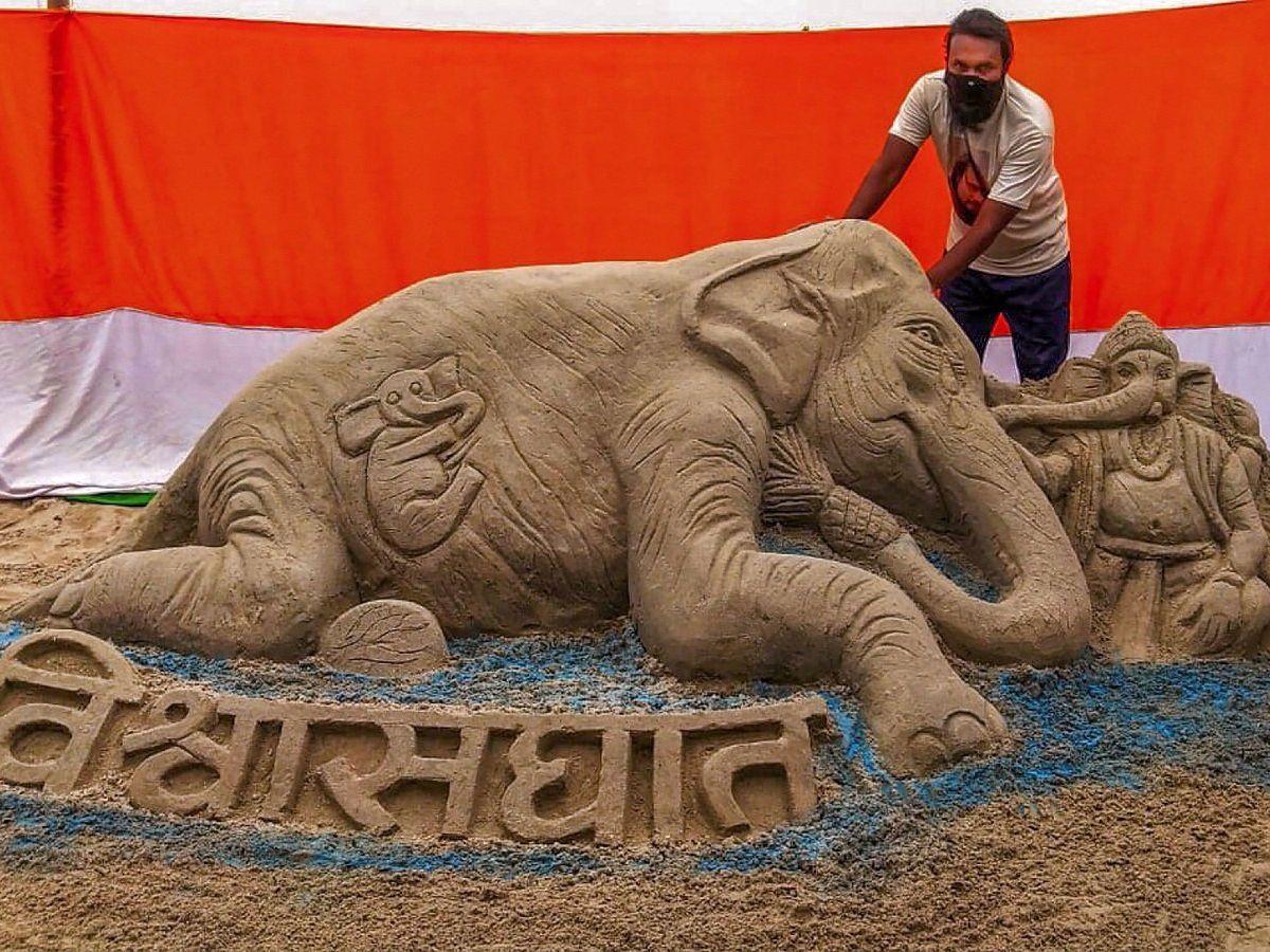 l'elefantessa uccisa