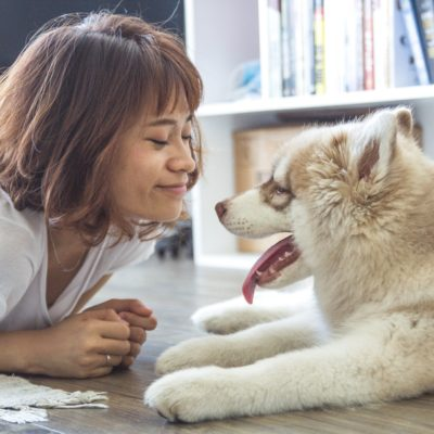 Sapevi che i cani sorridono?