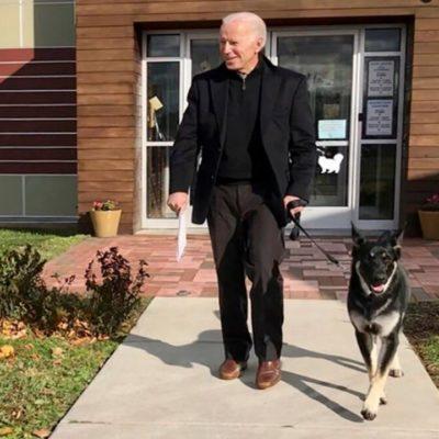 Il ritorno dei First Dogs: i cani di Joe Biden
