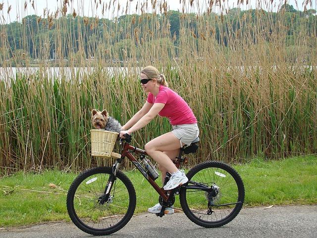 sport da fare con il cane bicicletta