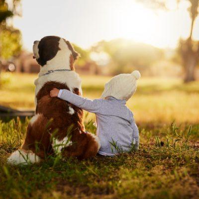 Cani e bambini, l'inizio della convivenza