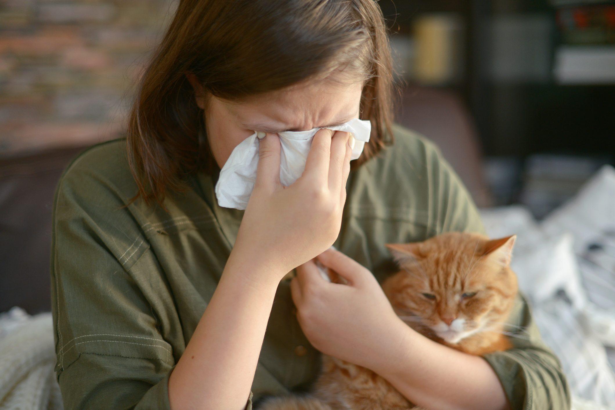 Allergia al pelo del gatto