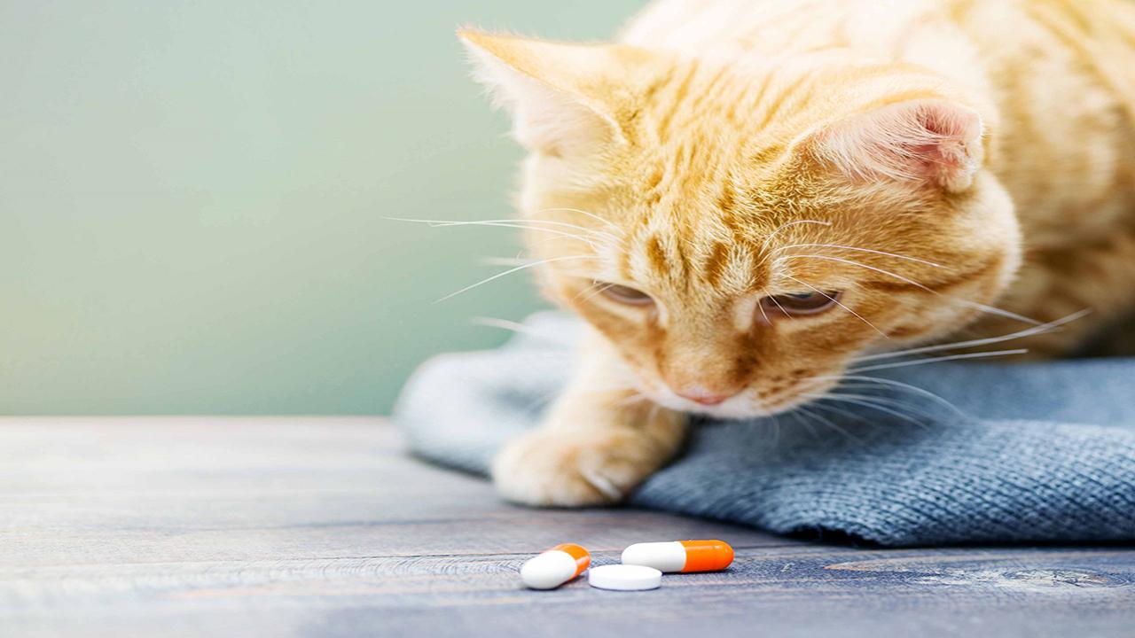 Farmaci umani
